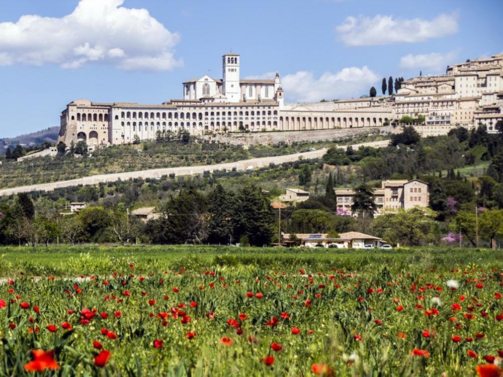 Bella Assisi